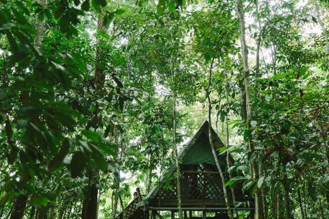 Tungong