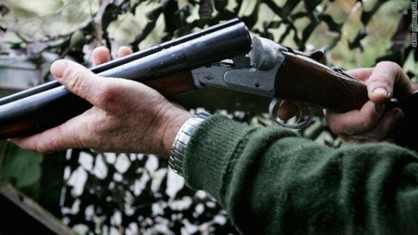 T1Larg.shotgun.gi