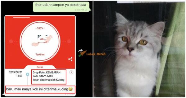 Kok Kucing E1633141933453