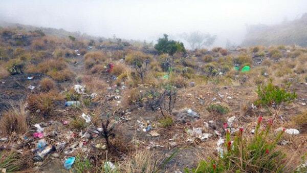 Sampah Di Gunung Rinjani 169